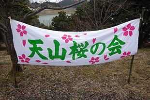 天山桜の会
